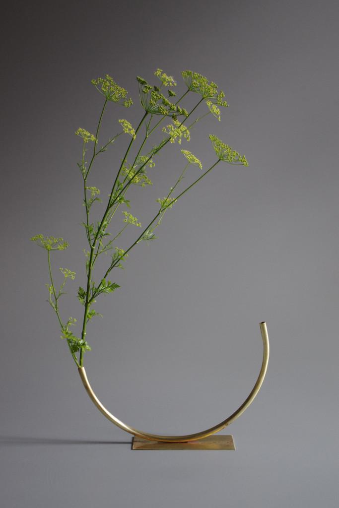 vaso-minimal-design-4