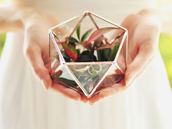 20, vase, geometric, green, terrarium, orchid, glass, metal