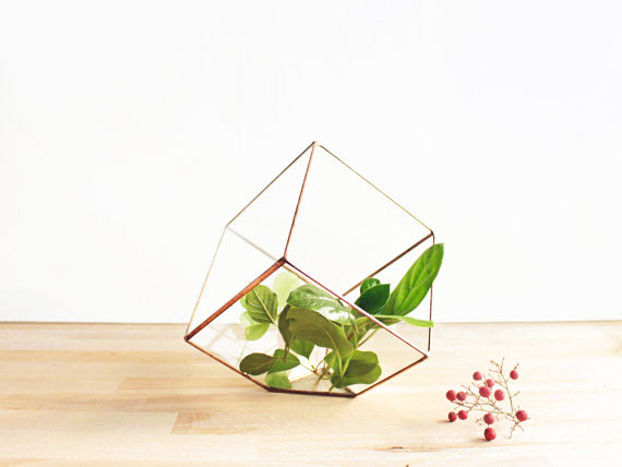 21, 13, vase, geometric, terrarium, orchid, glass, metal, green, gold, red