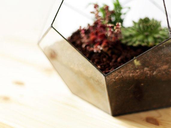 5, vase, geometric, terrarium, orchid, glass, metal