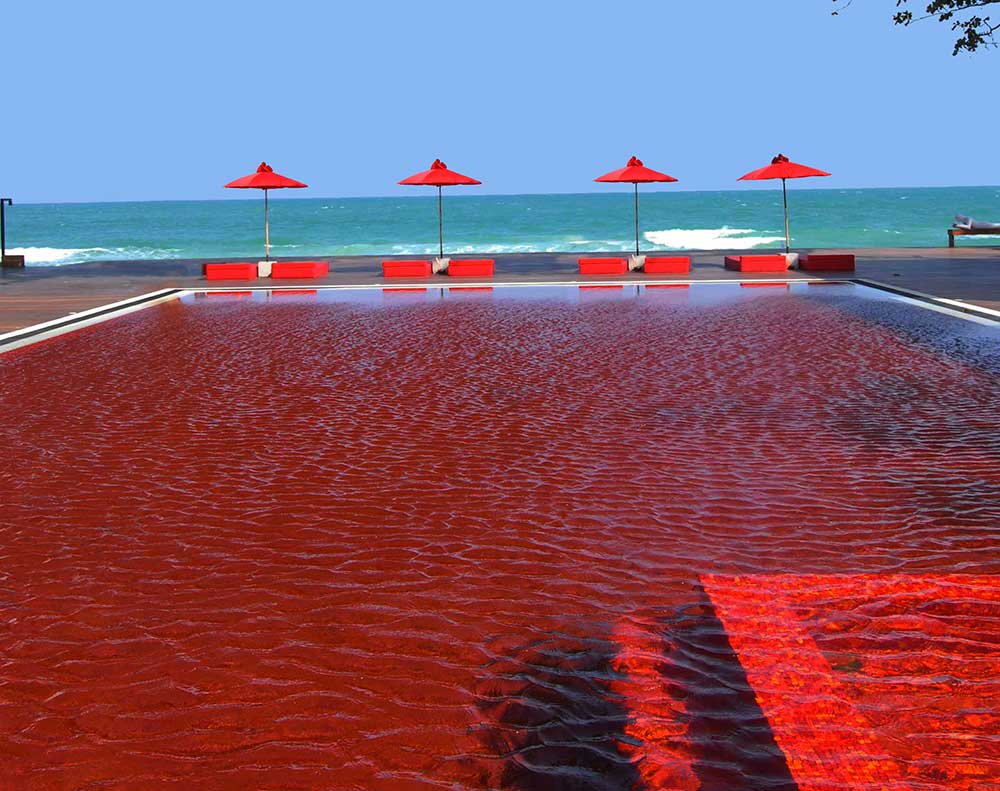 top ten swimming pool by Camilla Bellini in the blog the diary of a designer.