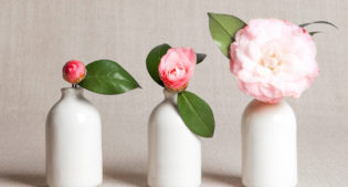 Vases, the most  #Cheap&Chic on the Internet!