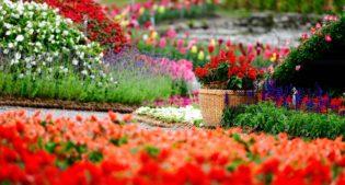 Top10: Outdoor planters