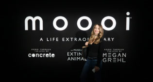 C'est Moooi: the design jungle of the Fuorisalone 2018