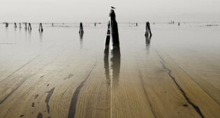 A sea of parquet: the briccole of Venice by Ideal Legno