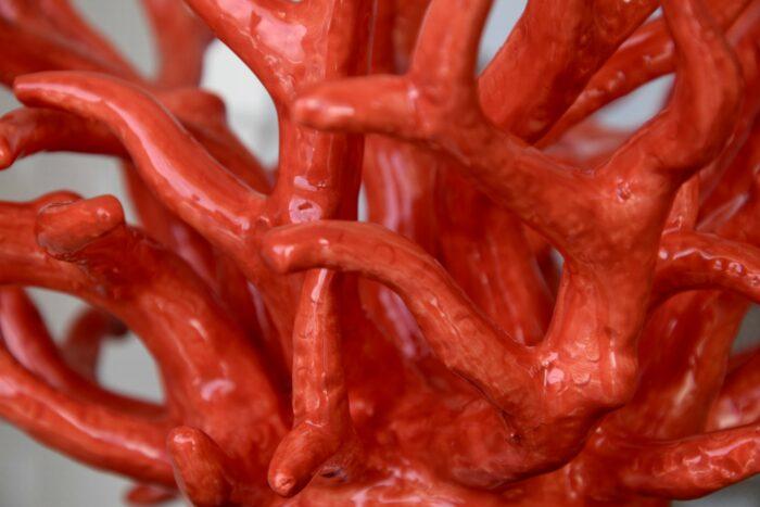 Dettagli del corallo di ceramica