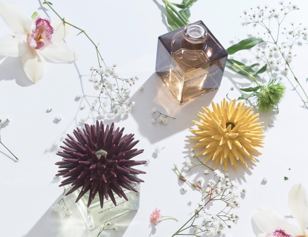 riccio-caprese-fragranze-capri-design-italia